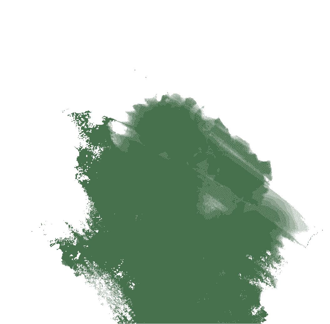 Goldringelgrundel - Brachygobius doriae
